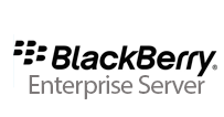 blackberry Enterprise Service png logo