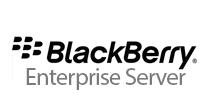 blackberry Enterprise Service png logo