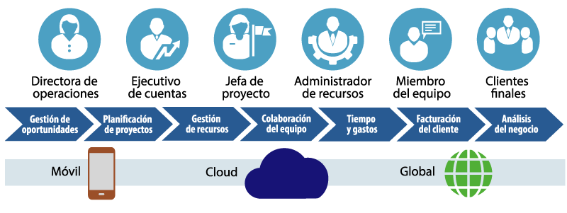 Grafico-Microsoft-Dynamics-365-for-Project-Service-Automation-by-AWERTY